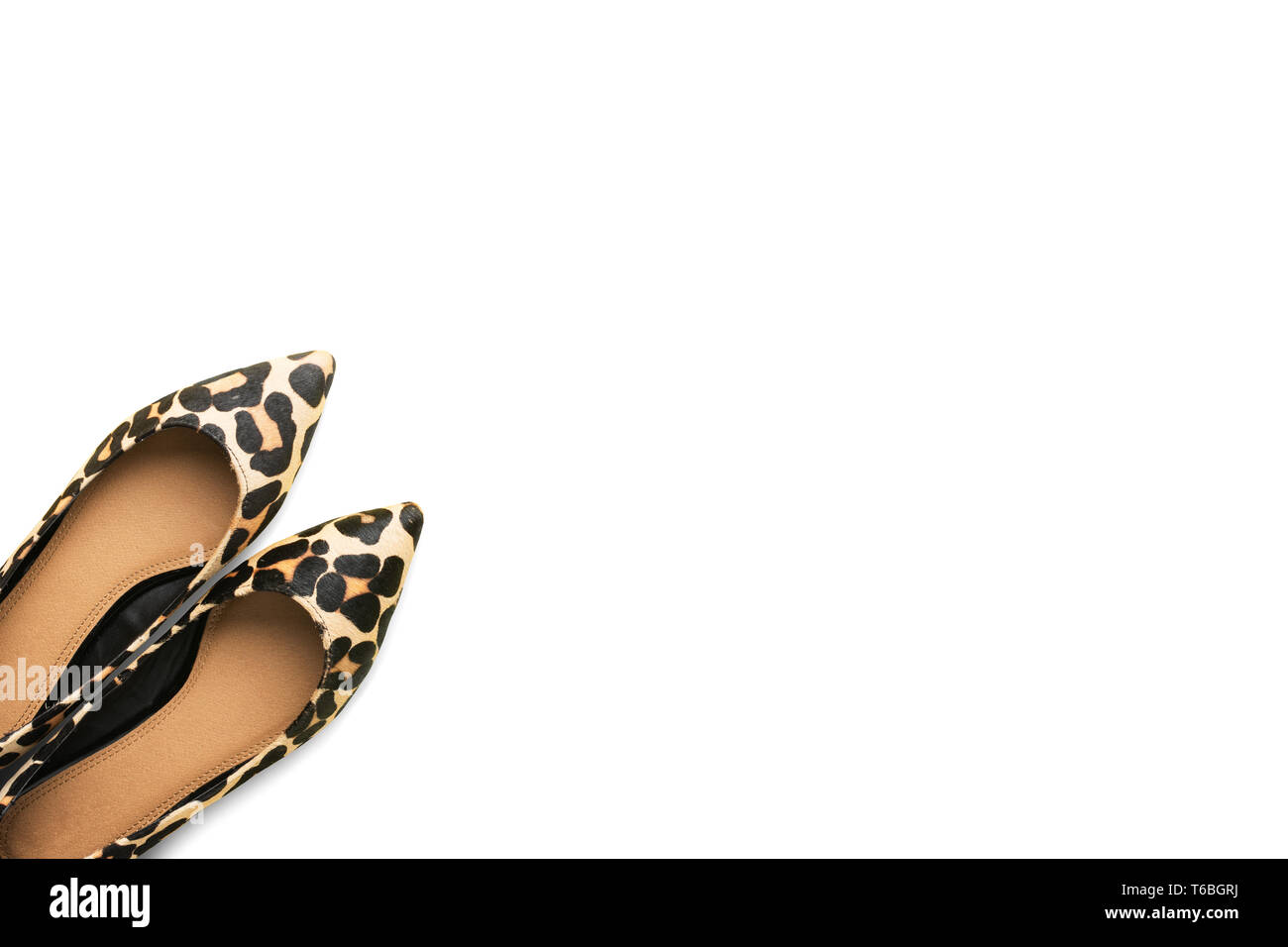 Trendy leopard print shoes on isolated