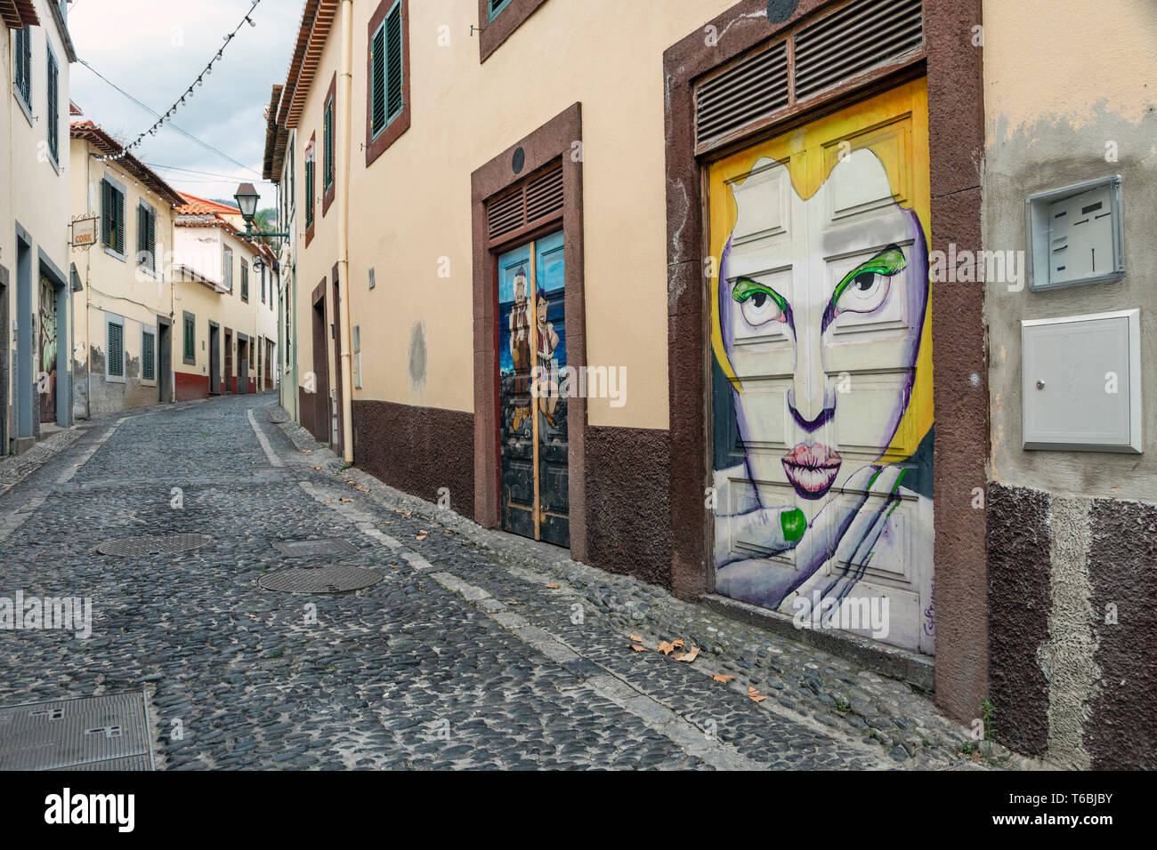 Murals painted as part of the Art of the Open Doors project in the Zona Velha (Old Town) area of Funchal, Madeira Stock Photo