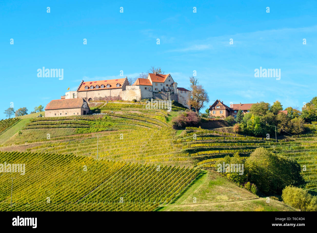 Schloss Staufenberg castle surrounded by vineyards, Durbach, Baden-Württemberg, Germany - Stock Image
