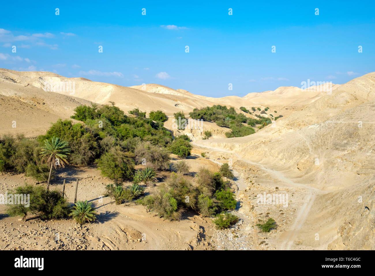 Palestine, West Bank, Jericho. Wadi Quelt, Prat River gorge. - Stock Image
