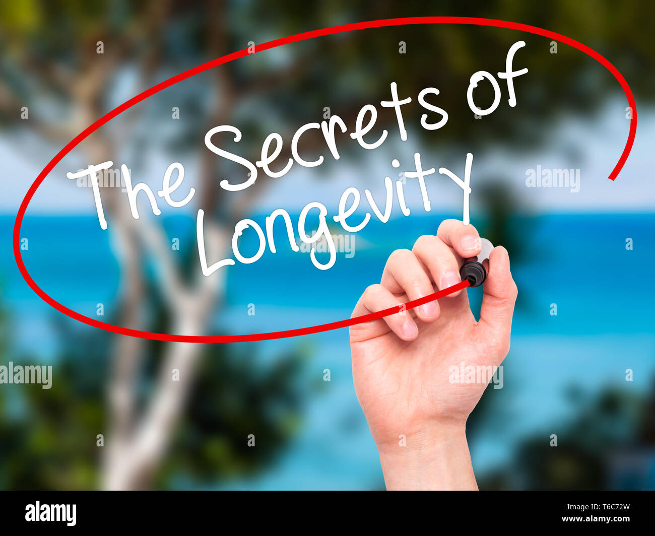 Man Hand writing The Secrets of Longevity with black marker on visual screen - Stock Image