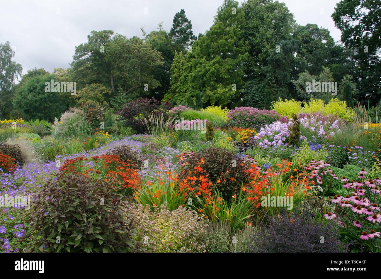 Hardy Perennials In Large English Border Stock Photo 244904906