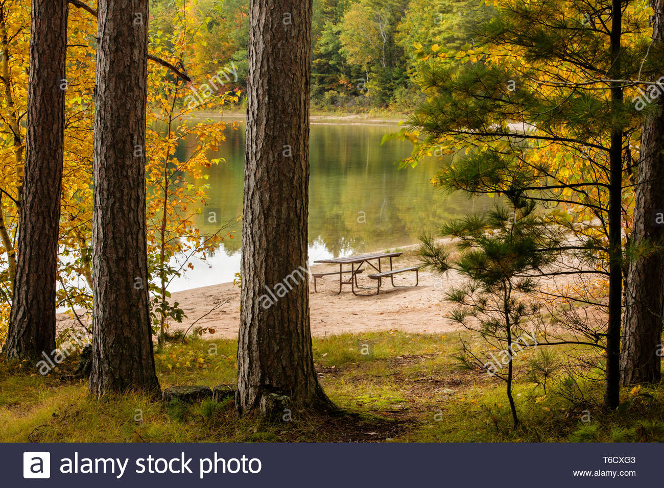 Autumn Colors In Vilas Park Lagoon >> Autumn Colors Reflect Off Firefly Lake Near Sayner Wisconsin In