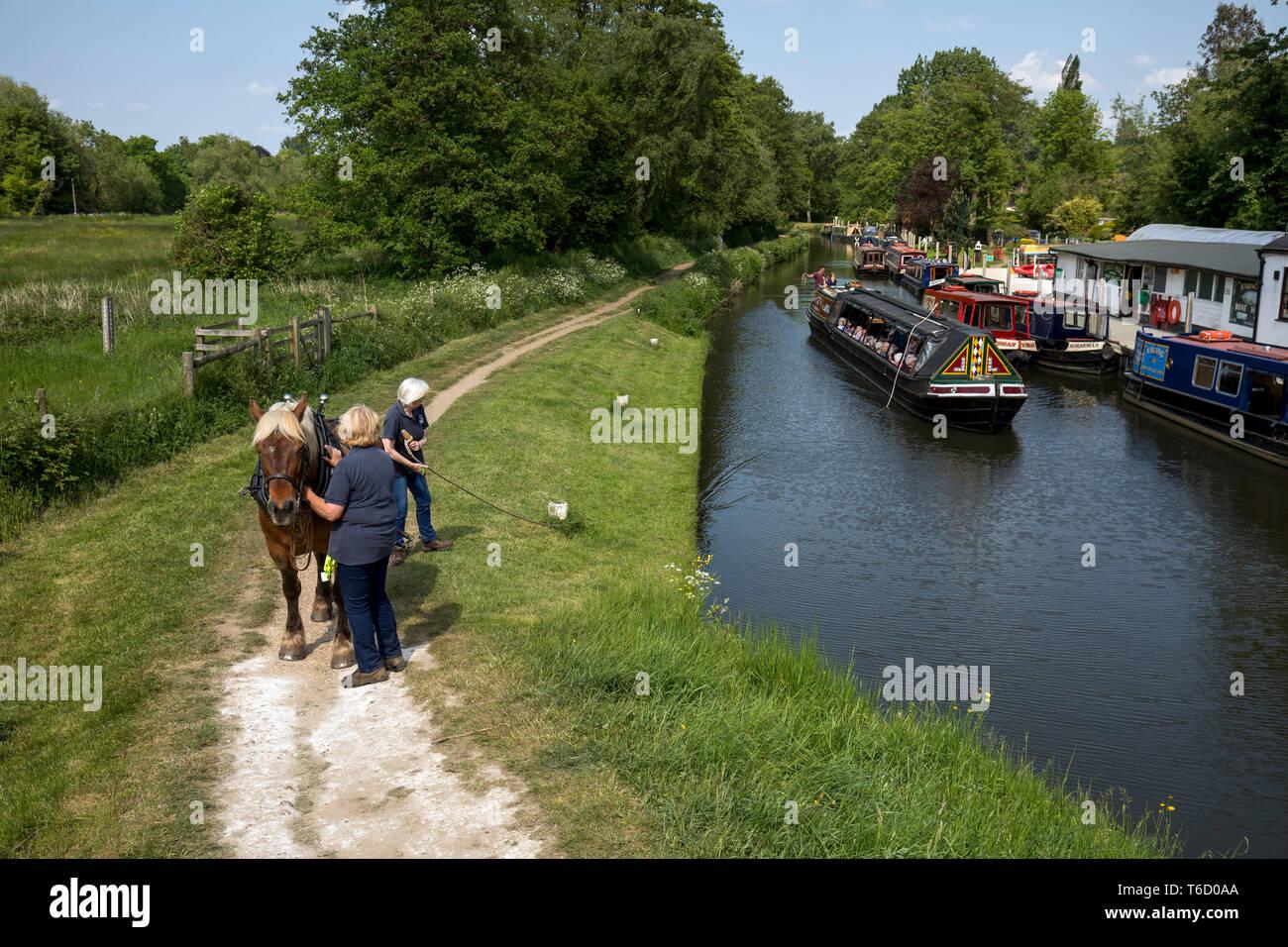 Godalming; Horse Drawn Boat; River Wey; Godalming; Surrey; UK - Stock Image
