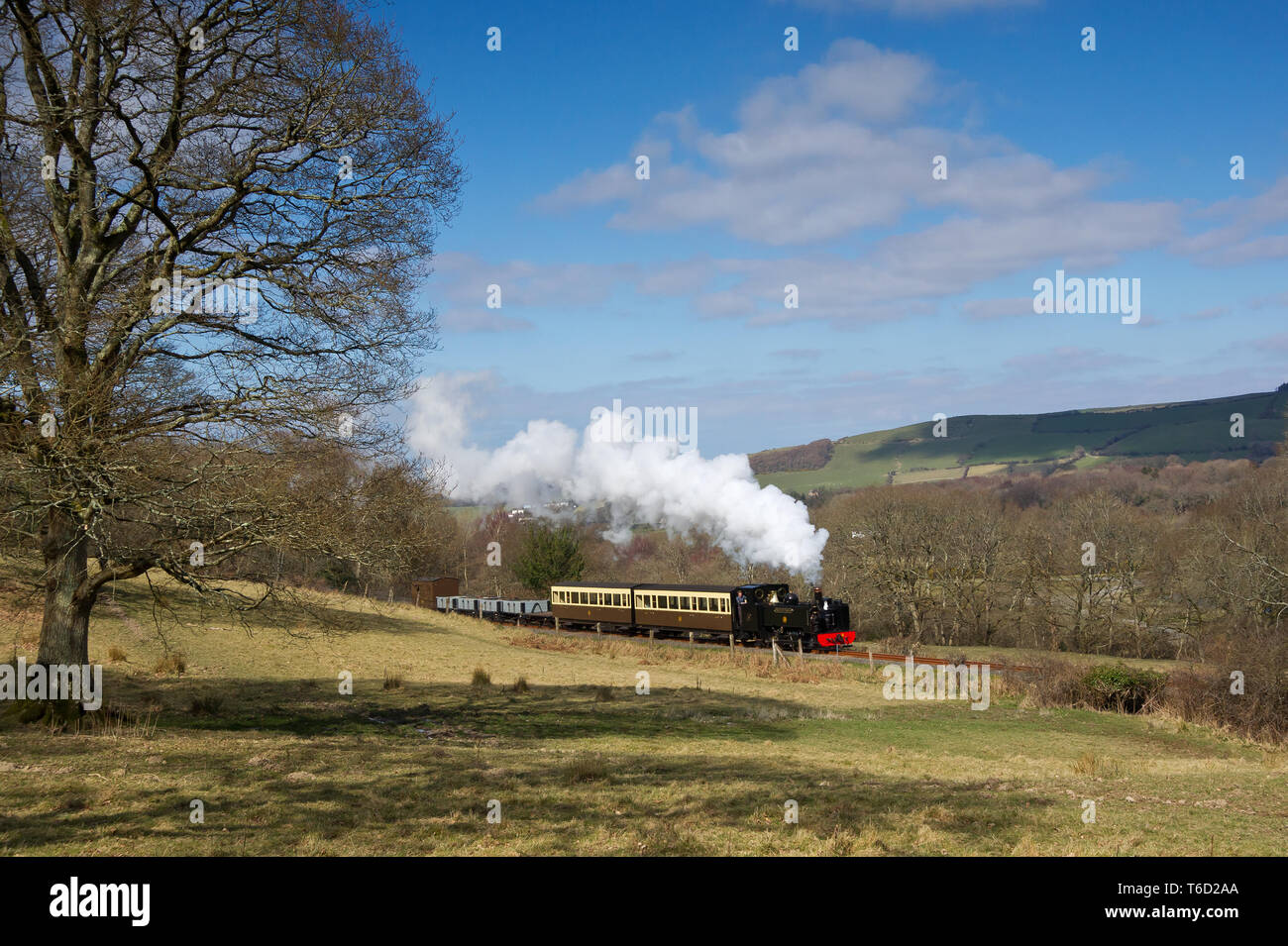 GWR 2-6-2T No.9 Prince of Wales on a short mixed train heads up the Vale of Rheidol to Devils Bridge Wales March 2016 - Stock Image