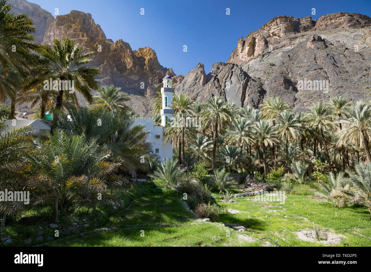 Oman, Dakhiliyah Governate, Jebel Hajar, Balad Sayt. A mosque in the remote village of Balat Sayt surrounded by green terraces and palm trees Stock Photo