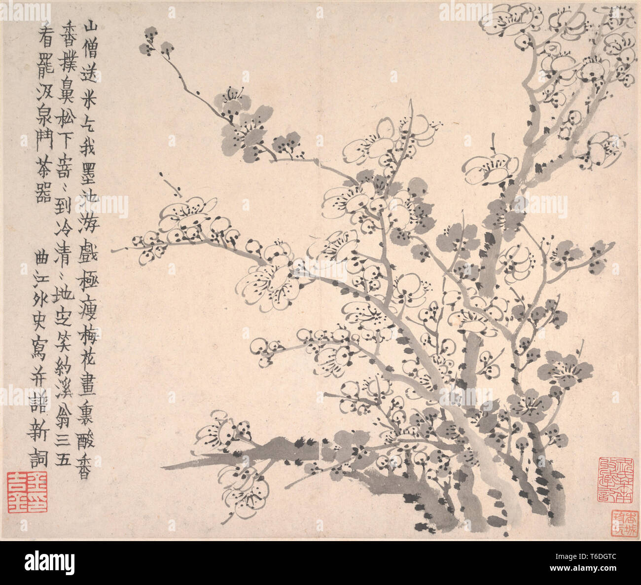 Qing Dynasty Jinnong Plum Blossoms album page 11 - Stock Image