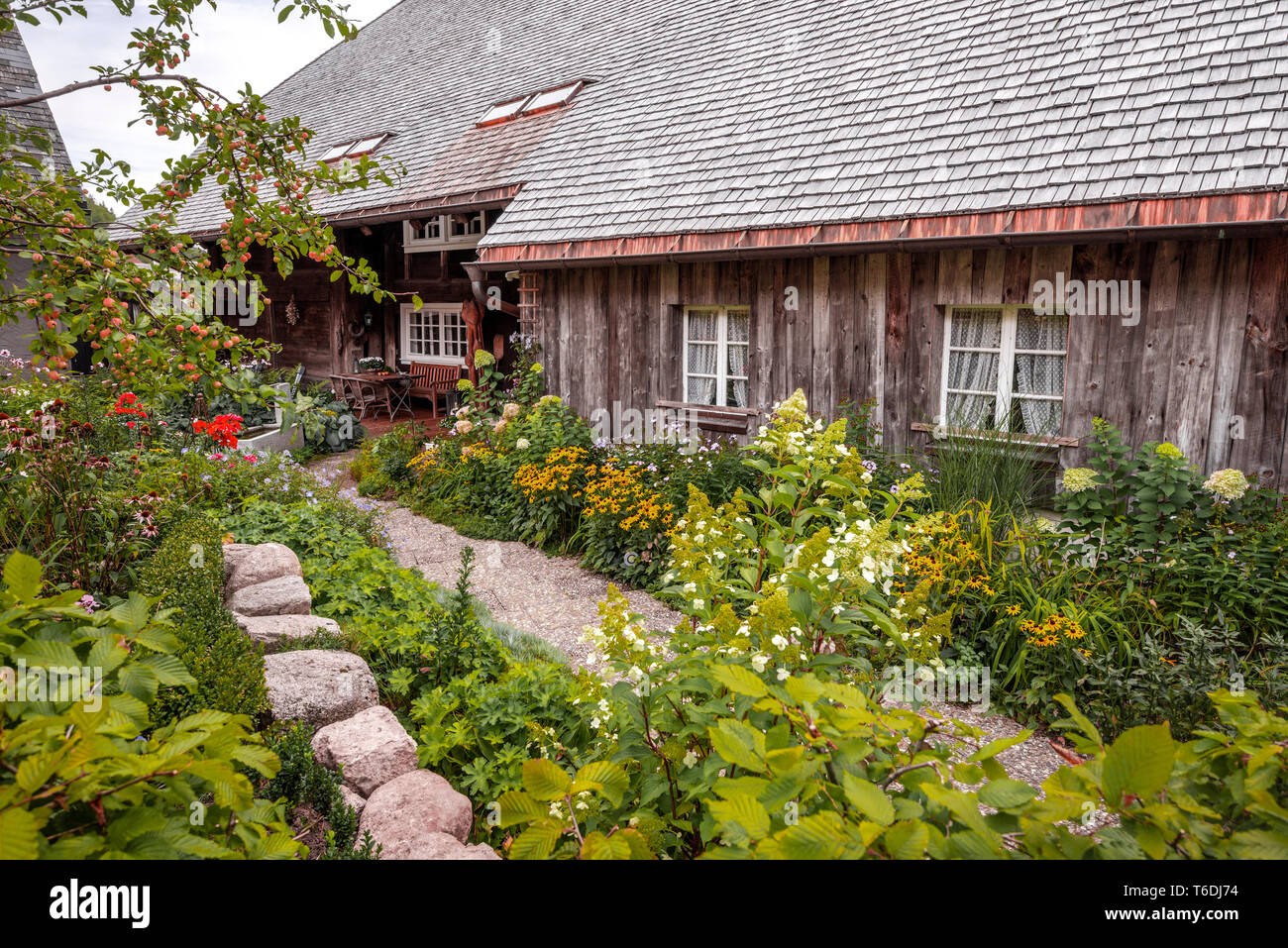 Cottage Garden With Fruit Tree In Front Of A Black Forest House Village Menzenschwand Germany Woodhouse With Shingle Covered Hip Roof Stock Photo Alamy