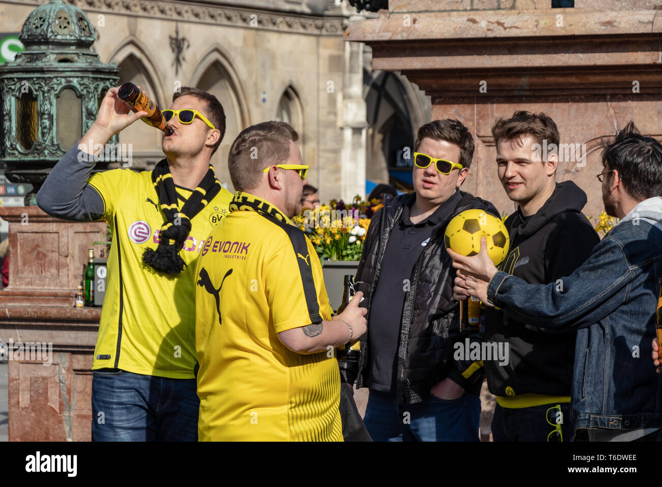 MARIENPLATZ, MUENCHEN, APRIL 6, 2019: bvb fans drinking alcohol at the marienplatz in munich for the public viewing - Stock Image