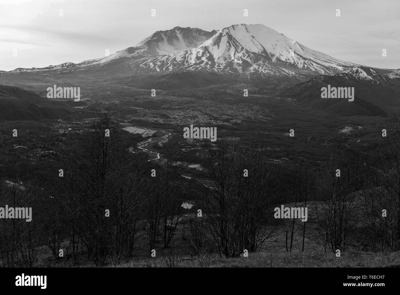 Mount Saint Helens volcano in the Cascade Mountains, Washington State USA - Stock Image