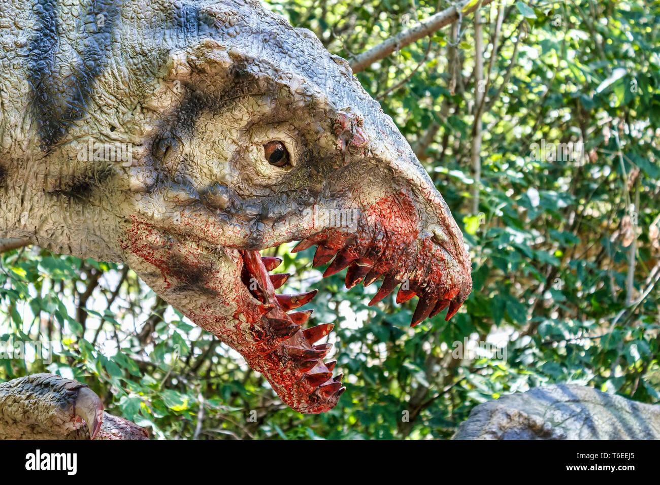 prehistoric dinosaurs raptors attacking its prey - Stock Image