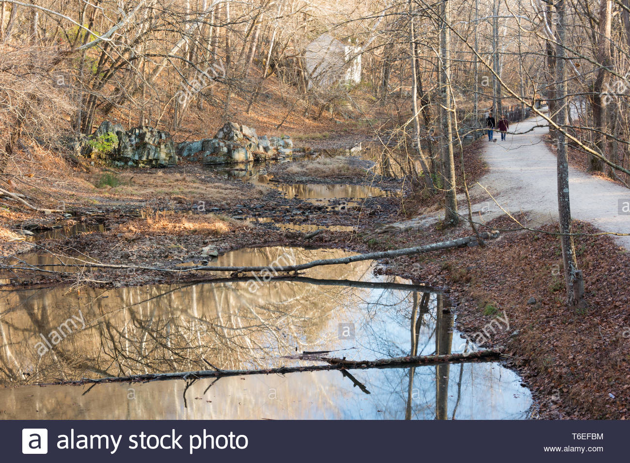The C&O Canal with towpath and old lock house in the background, Potomac, Maryland. - Stock Image