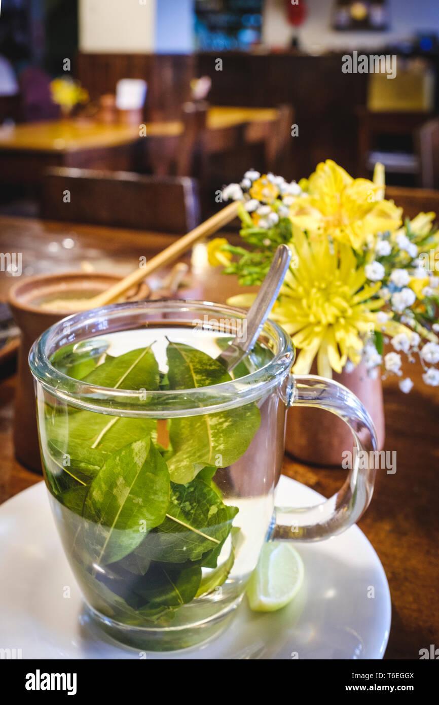 Cup of Coca leaves tea or Mate de Coca Stock Photo