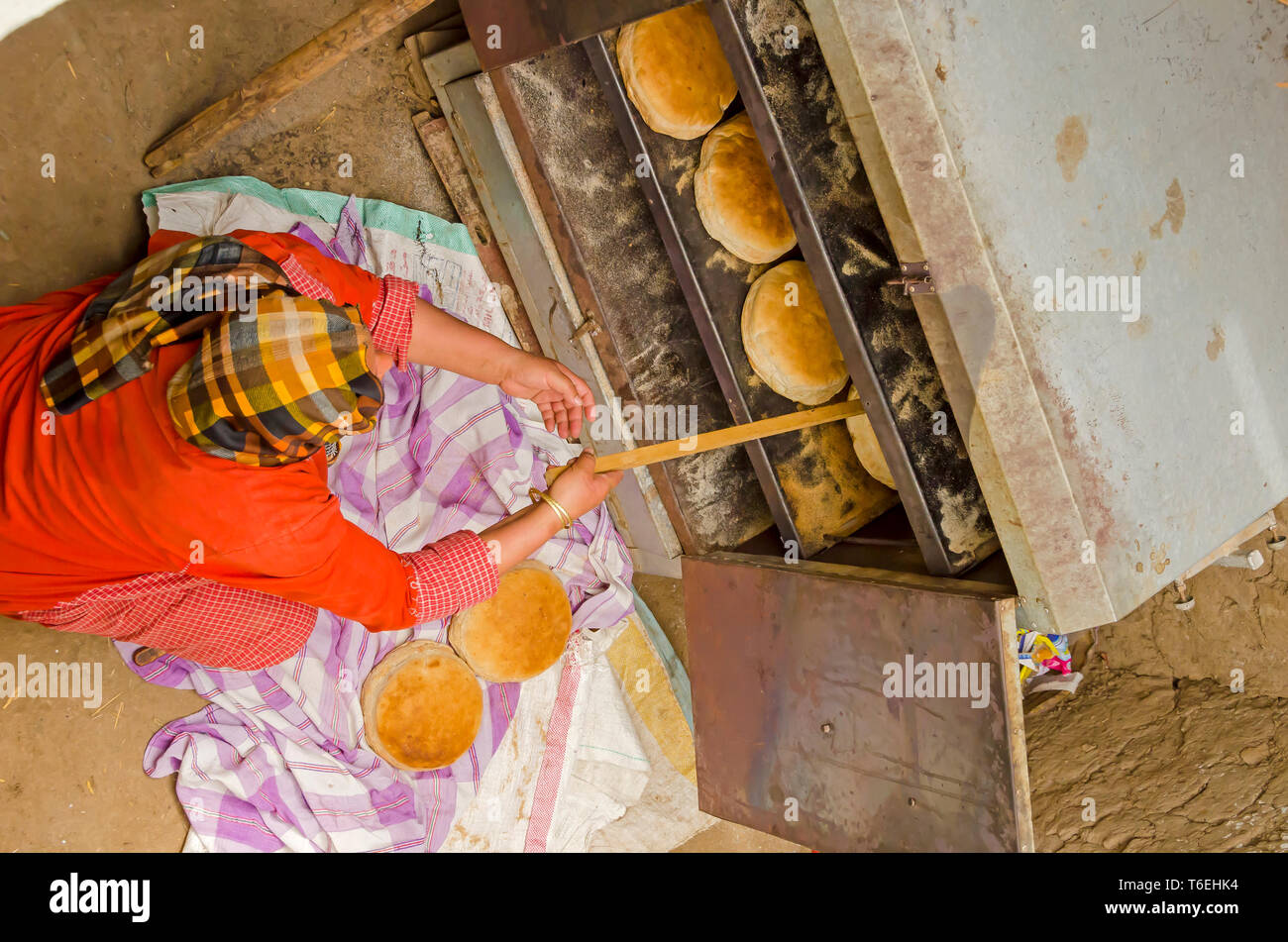 Egyptian woman bakes round loaves of of Aish Baladi bread in small home oven on farm - Stock Image