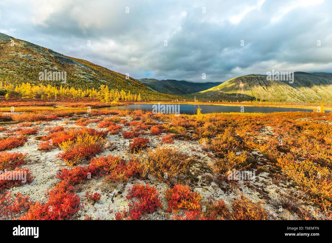 Autumn on Jack London's lake. - Stock Image