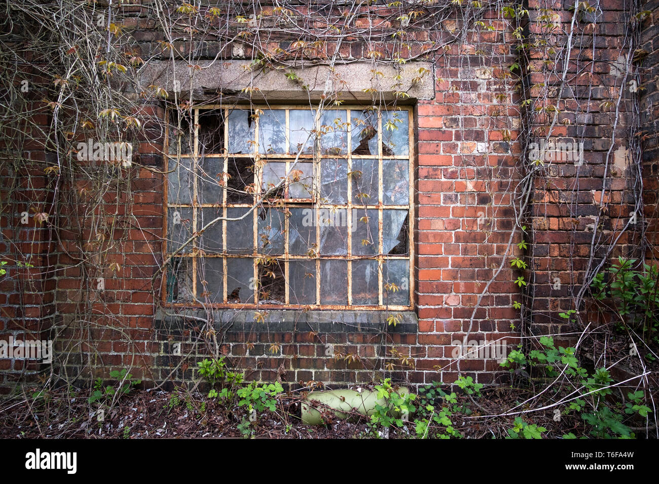 Old factory steel window frame - Stock Image