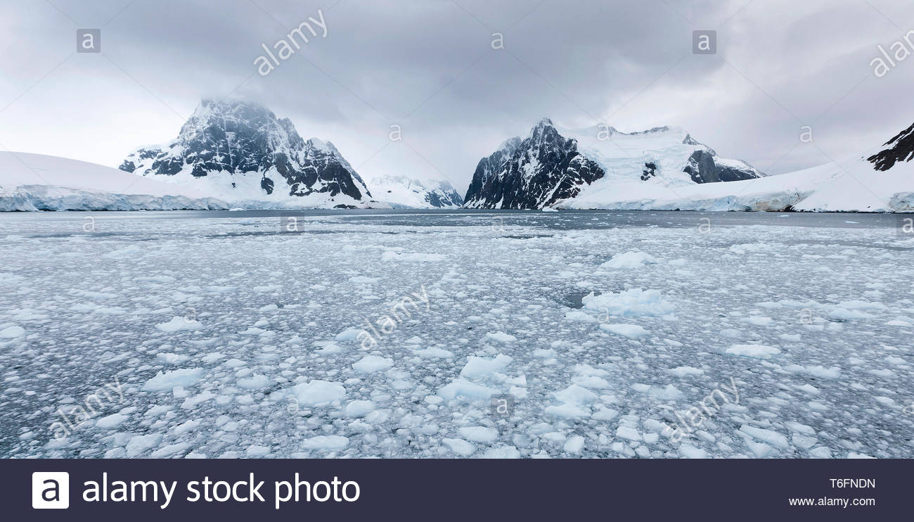 Drifting ice floes at Lemaire channel, Antarctic - Stock Image