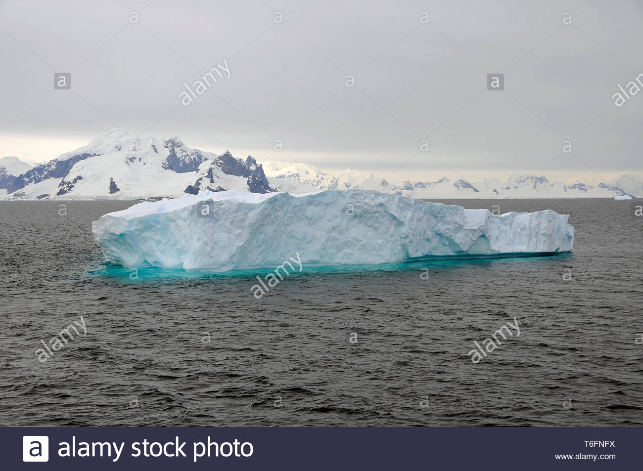 Drifting iceberg at Lemaire channel, Antarctic - Stock Image