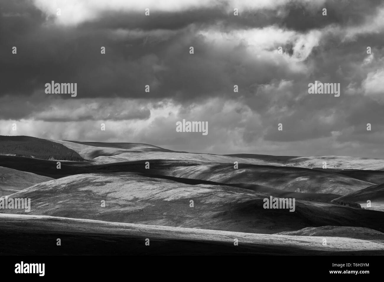 Otterburn, Northumberland, England, UK. 27th April 2019. Looking north east from Featherwood across artillery firing ranges on Otterburn Camp into Upp - Stock Image