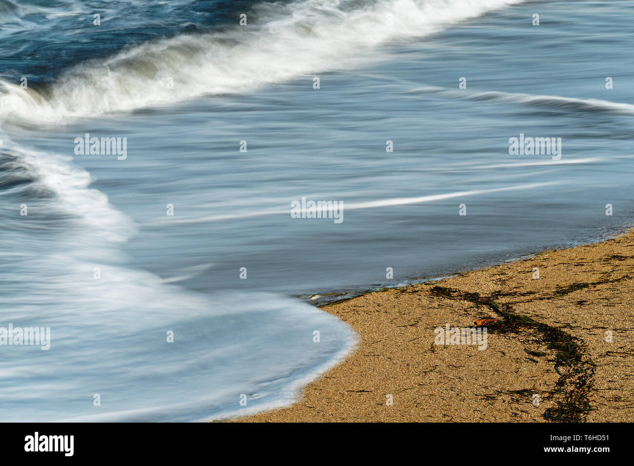 Detail view of a wave, which runs out on a sandy beach, the blue color of the sky is reflected in the shallow water, some washed-up seagrass on the sa - Stock Image
