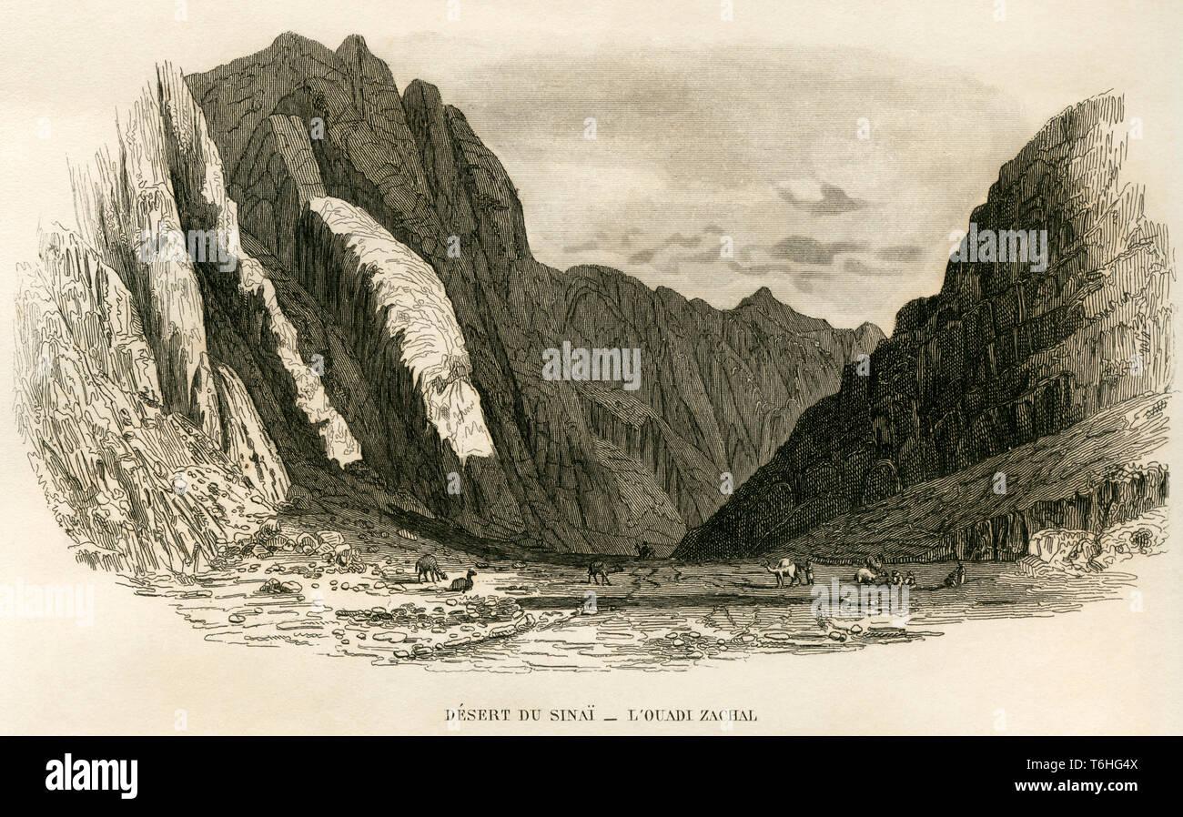 Asien, Ägypten, Sinai Halbinsel, Wüste Sinai, Kupferstich von Adam nach Monvoisin bei T. Blanchard, 1846 . /  Asia, Egypt, Sinai Peninsula, copperplat Stock Photo