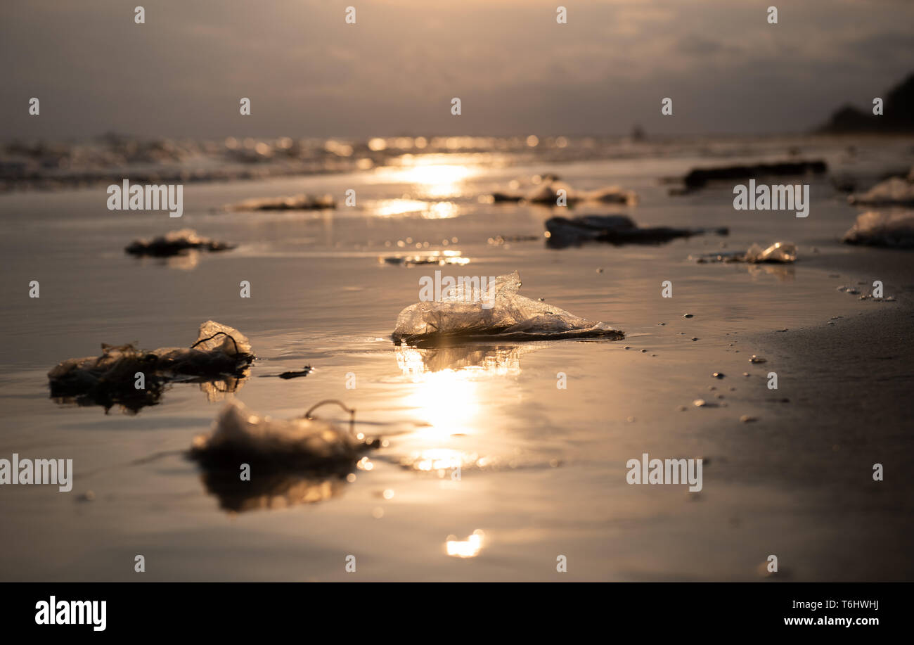 Plastic garbage on the beach in pollution sea scape  environment with sun lighting. - Stock Image
