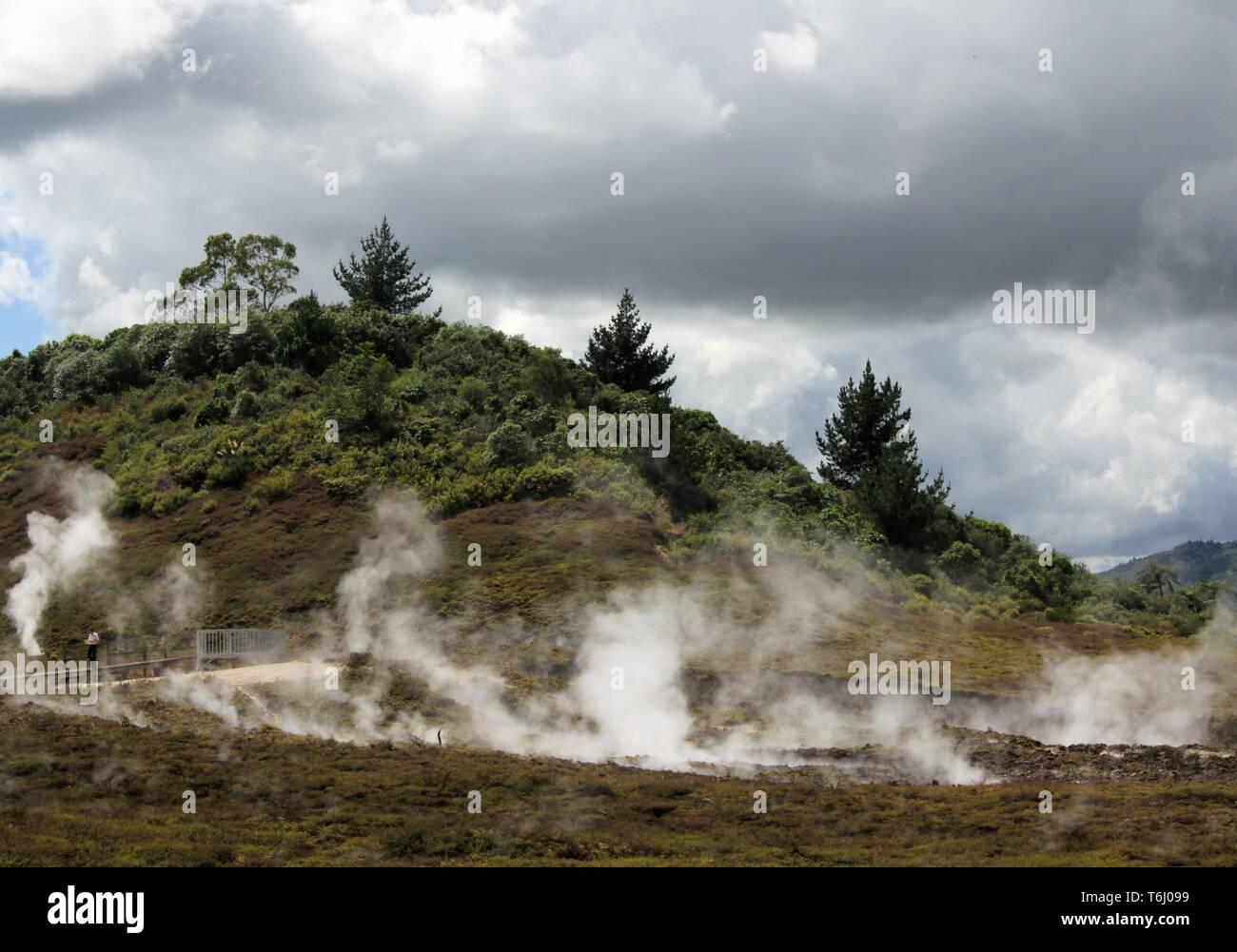 Orakei Korako hidden geothermal valley: View on steaming hills (Fumaroles) - Stock Image