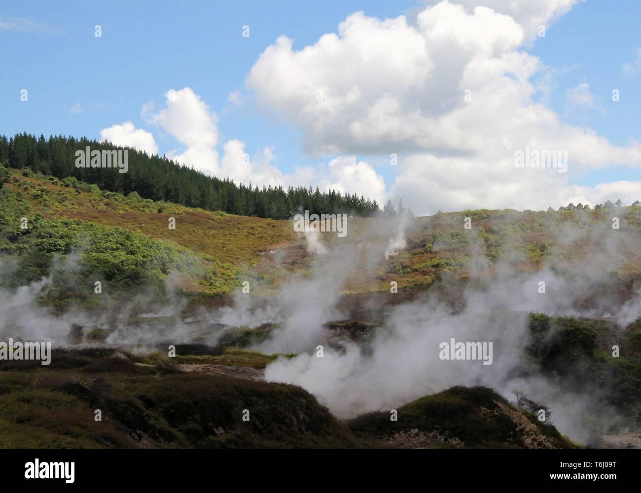 Orakei Korako hidden geothermal valley: View on steaming hills (Fumaroles) Stock Photo