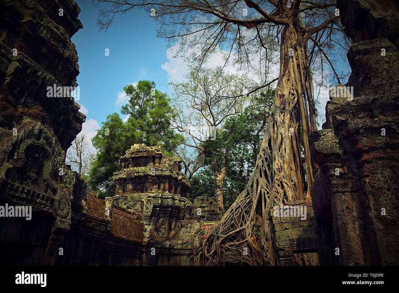 Views from Angkor Wat in Cambodia - Stock Image