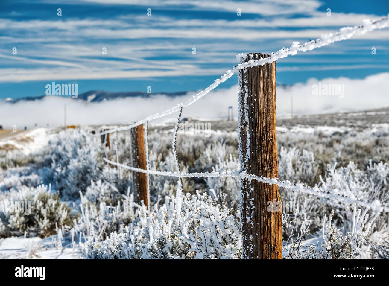 Landscape with hoarfrost on the fence Stock Photo