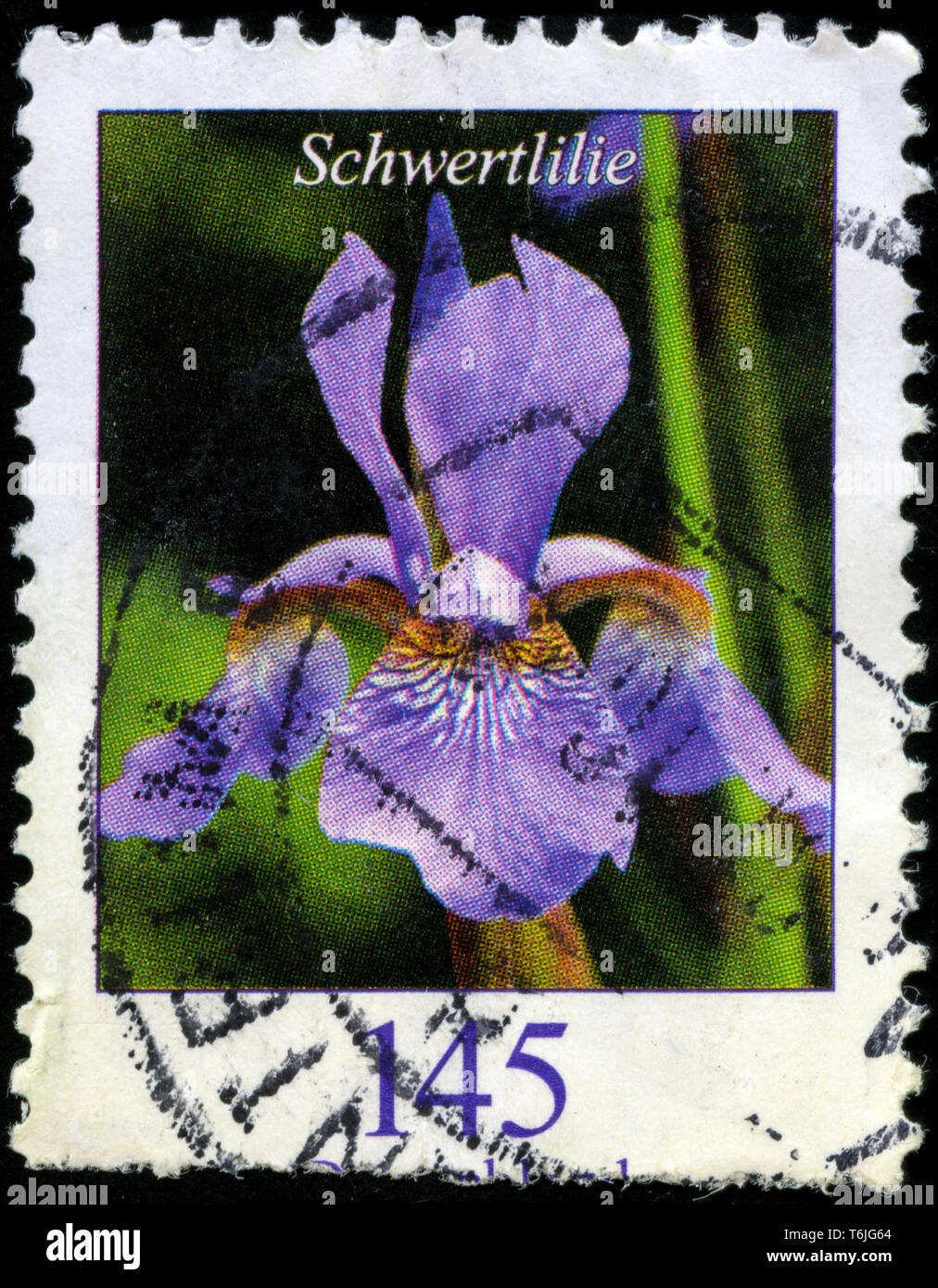 Postage stamp from the Federal Republic of Germany in the Flowers series issued in 2005 - Stock Image