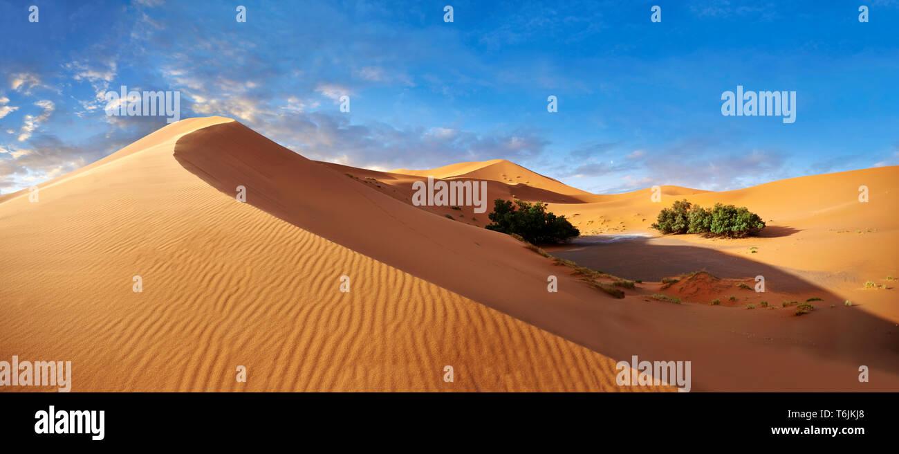 Sahara parabolic sand dunes of Erg Chebbi, Morocco, Africa - Stock Image