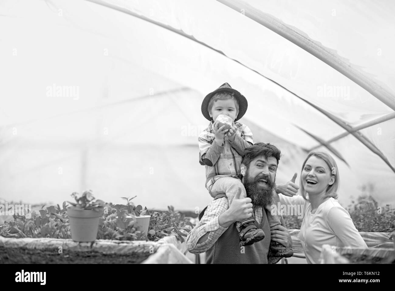 Cheerful family in greenhouse. Father in blue vest holding his son on shoulders while kid is eating apple. Bearded man and his blond wife in pink - Stock Image