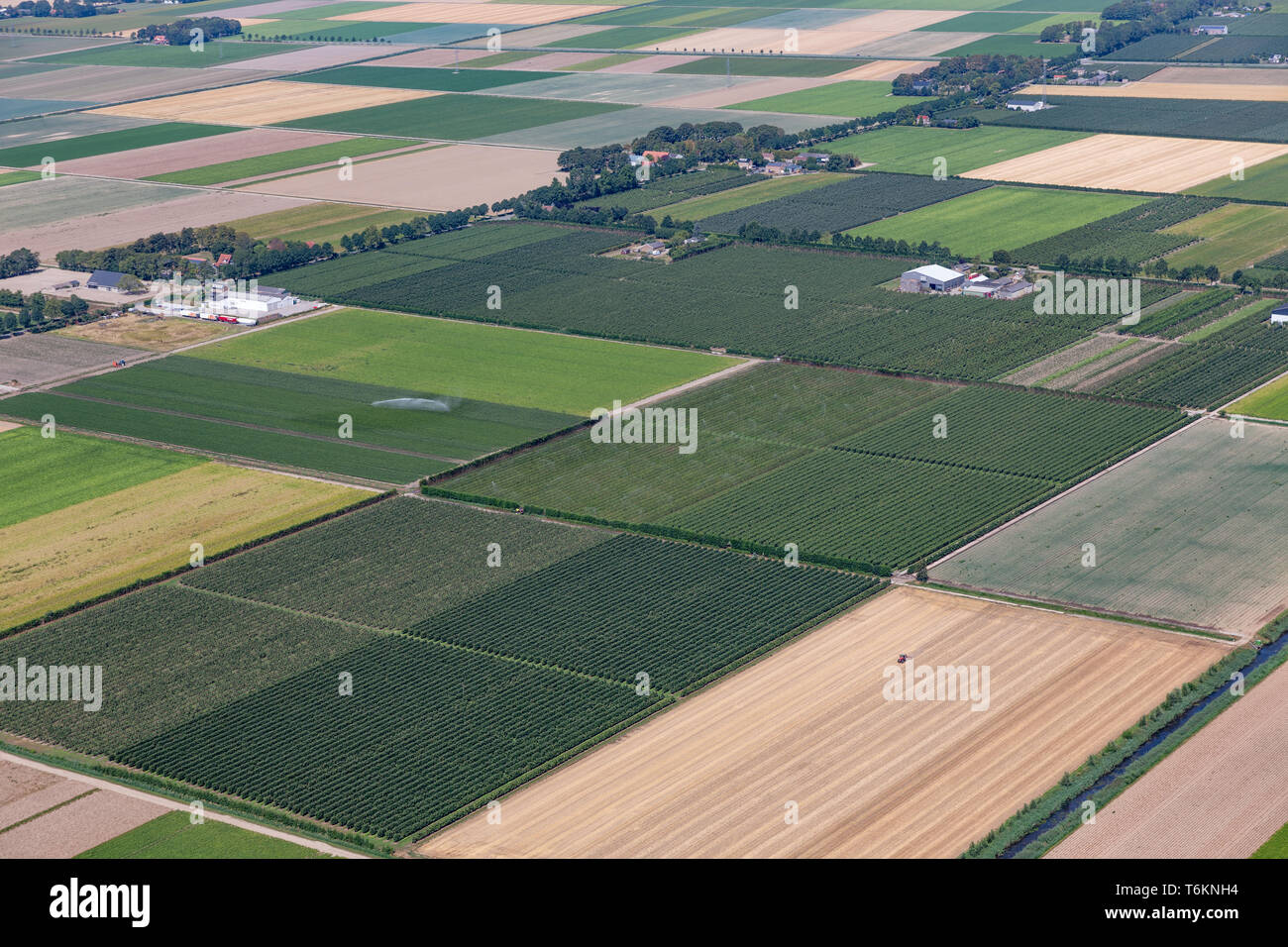Aerial view Dutch polder with agricultural landscape and farmhouses - Stock Image