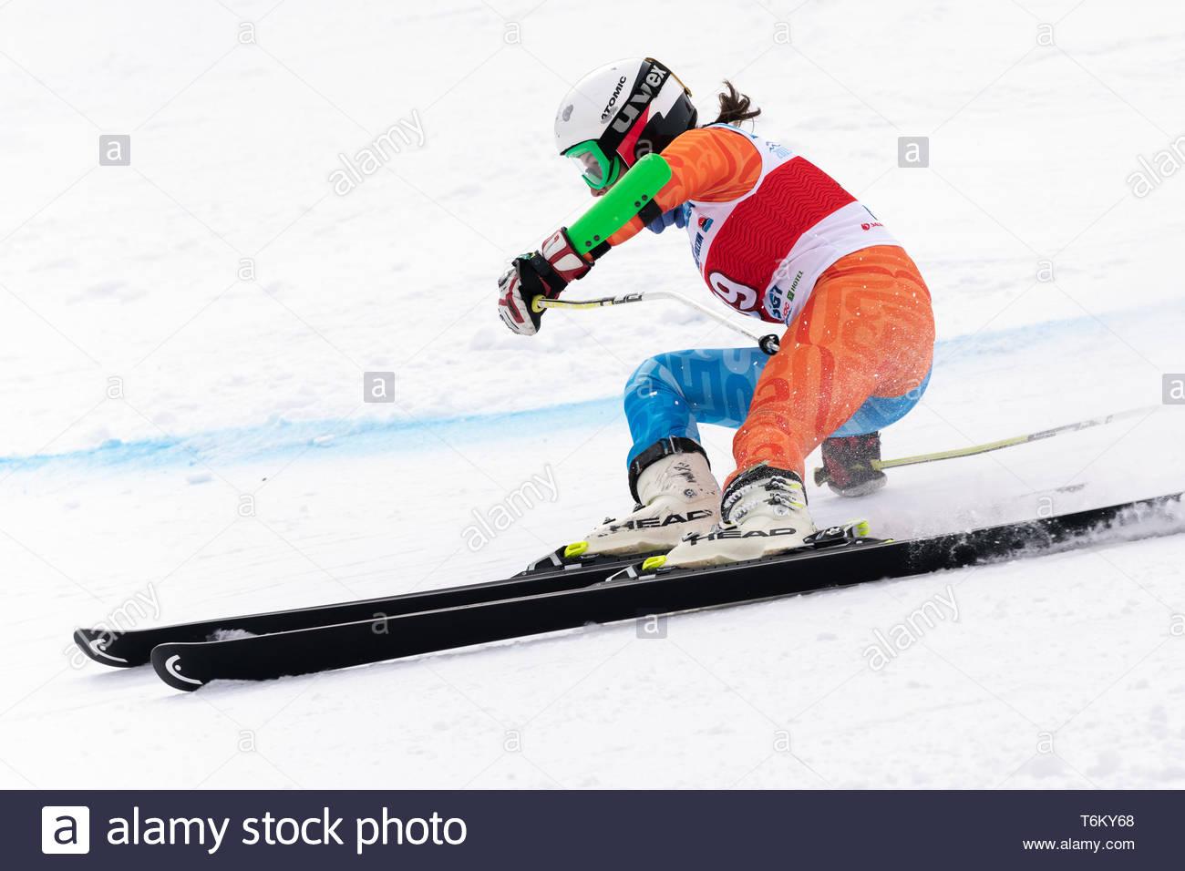 KAMCHATKA PENINSULA, RUSSIA - APR 2, 2019: Mountain skier Victoria Fugleva (Sakhalin Region) skiing down mount. International Ski Federation Champions - Stock Image