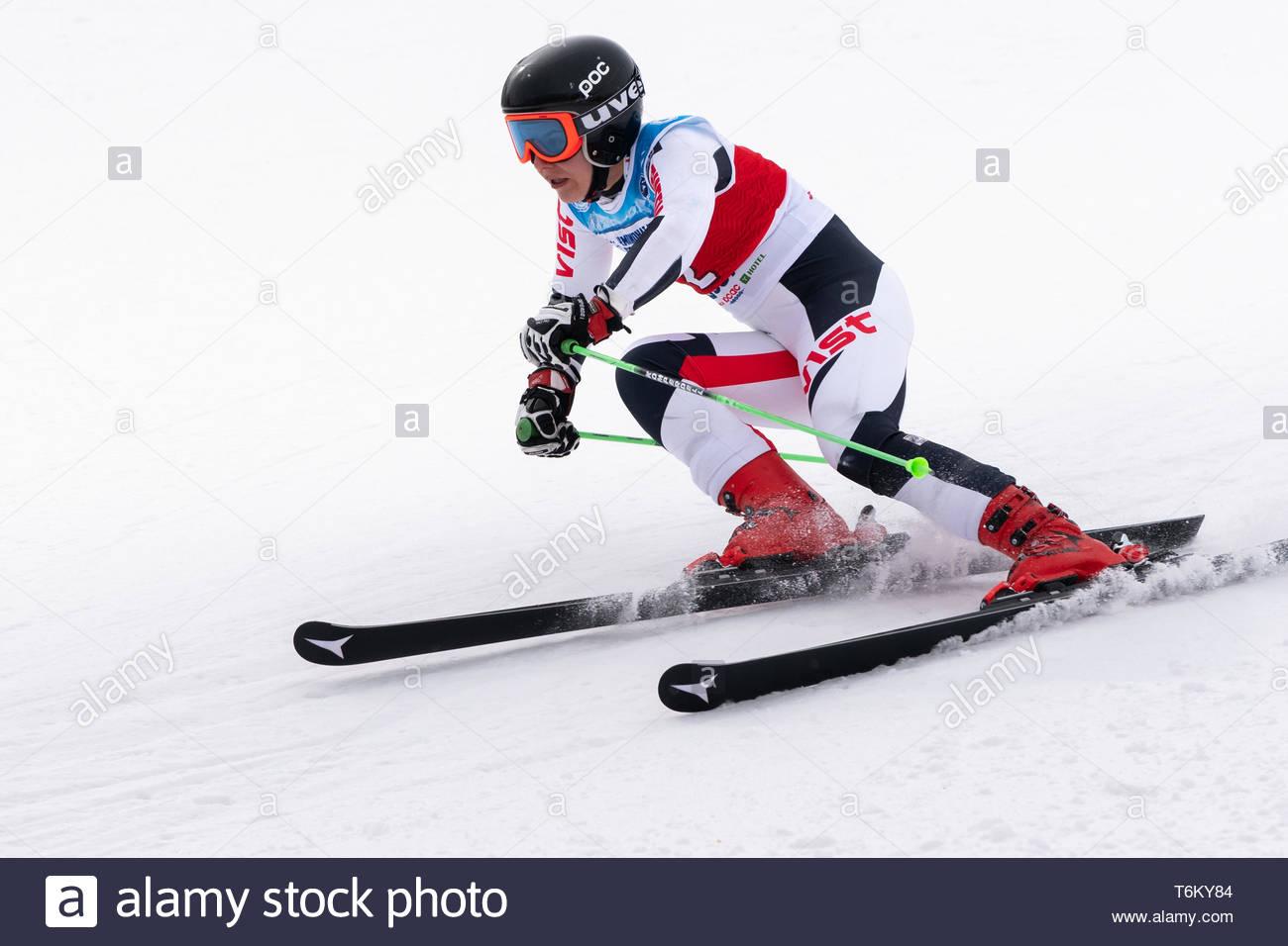 KAMCHATKA, RUSSIA - APR 2, 2019: Mountain skier Timchenko Elizaveta (Kamchatka Peninsula) skiing down mount. Russian Women's Alpine Skiing Cup, Intern - Stock Image