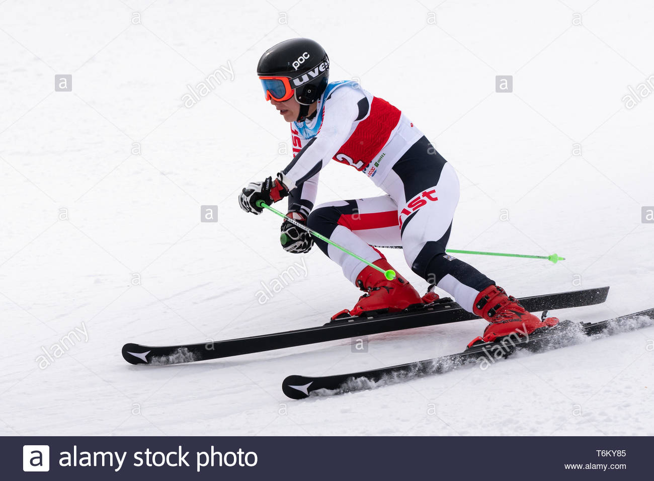 KAMCHATKA, RUSSIA - APR 2, 2019: Mountain skier Elizaveta Timchenko (Kamchatka Peninsula) skiing down mount. International Ski Federation Championship - Stock Image