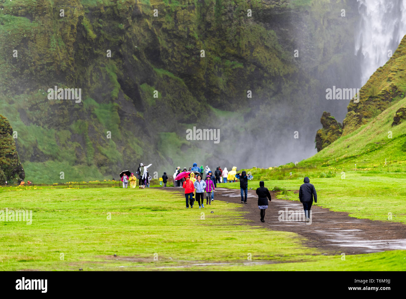 Skogafoss, Iceland - June 14, 2018: Waterfall on cliff with green grass meadow and many tourists people walking with ponchos on trail road in rainy mo - Stock Image