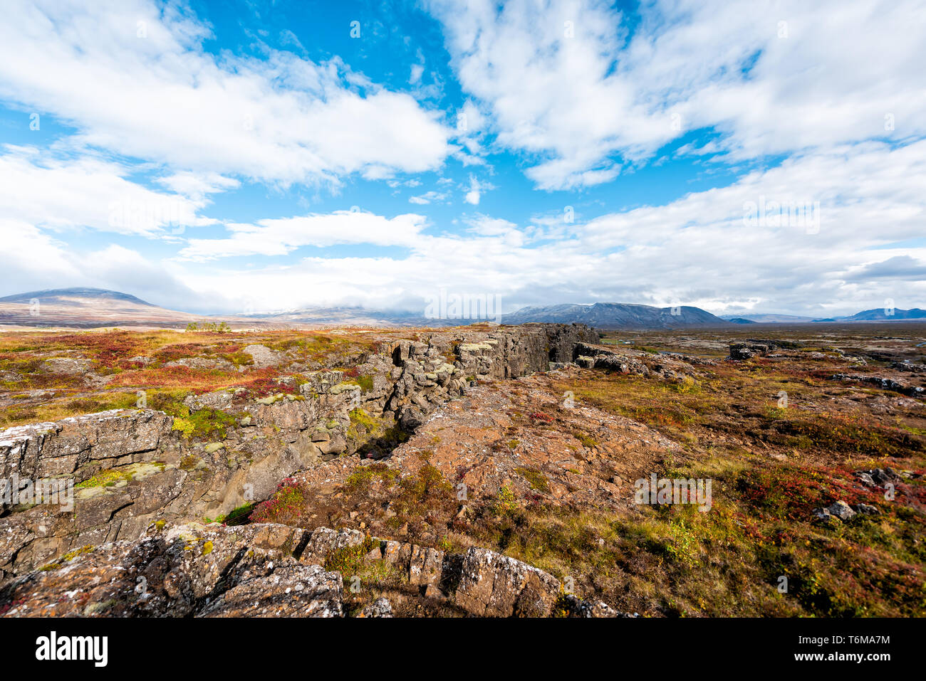 Thingvellir National Park autumn plants during day landscape on top peak of canyon trail in Iceland Golden circle route with rocks Stock Photo