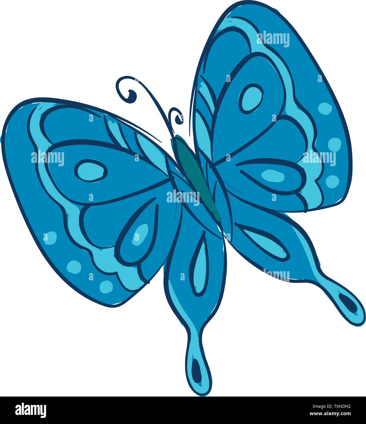 Clipart of a butterfly with two pairs of large  typically brightly blue-colored wings covered with microscopic scales of different patterns  vector  c - Stock Image