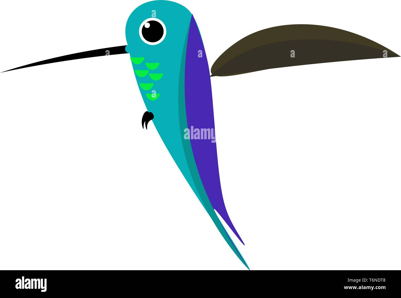 Cartoon colorful Colibri bird has a thin  and long bill  purple plumage  and is flapping its brown wings while at flight  vector  color drawing or ill - Stock Image