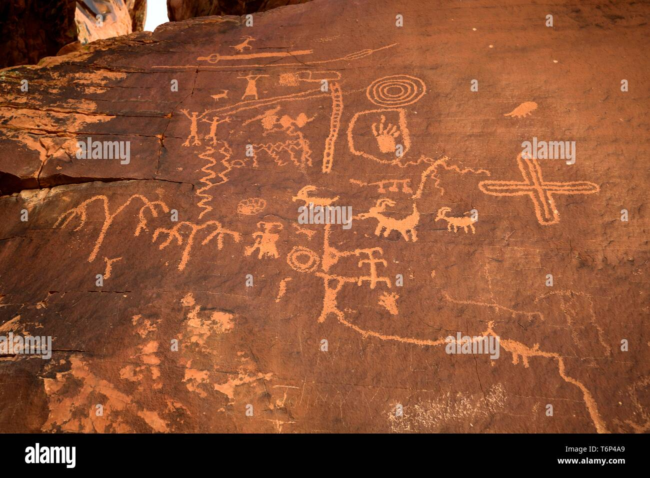 Indian petroglyphs of the Anasazi, Atlatl rock, Valley of Fire State Park, Nevada, USA - Stock Image