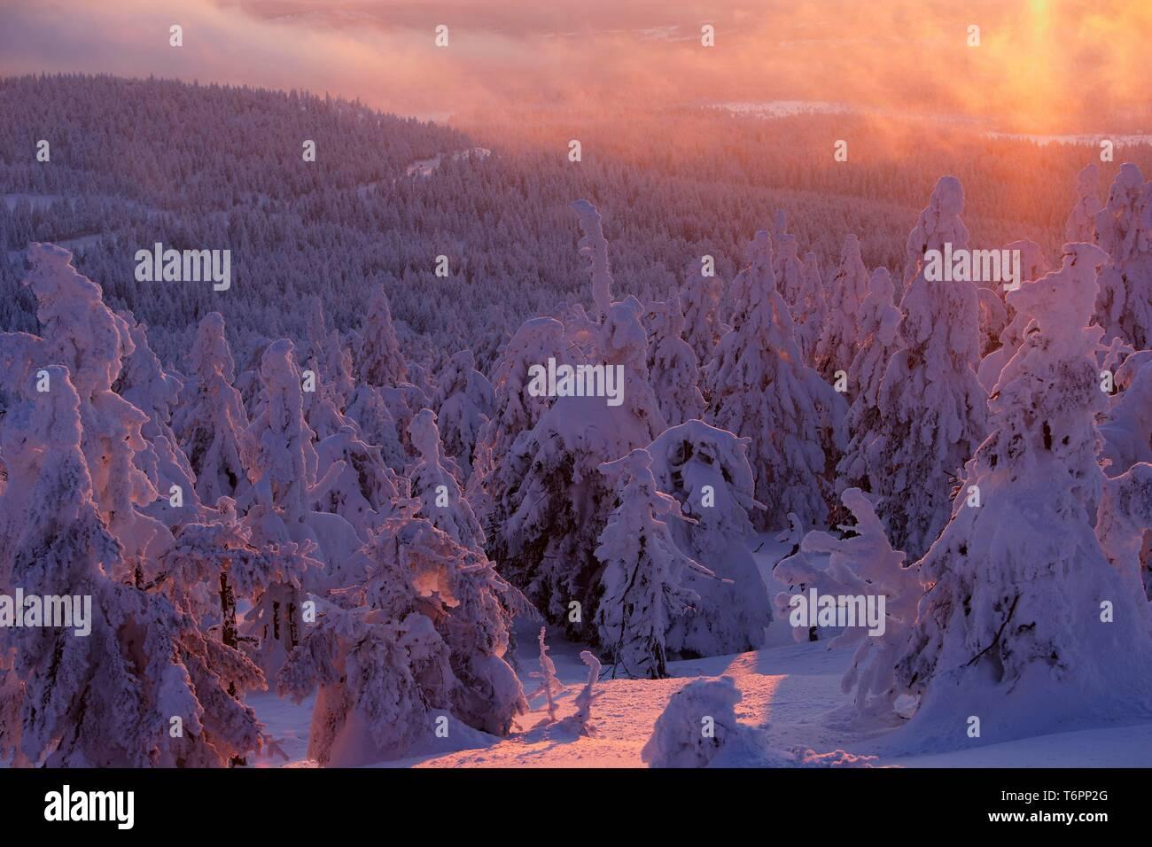 Mt. Brocken in winter at sunset, Harz mountains, Saxony-Anhalt, Germany, Europe Stock Photo