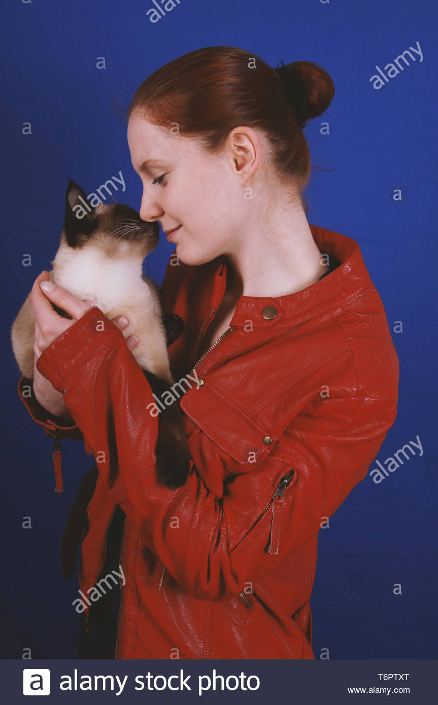 young woman touching noses with cat - Stock Image