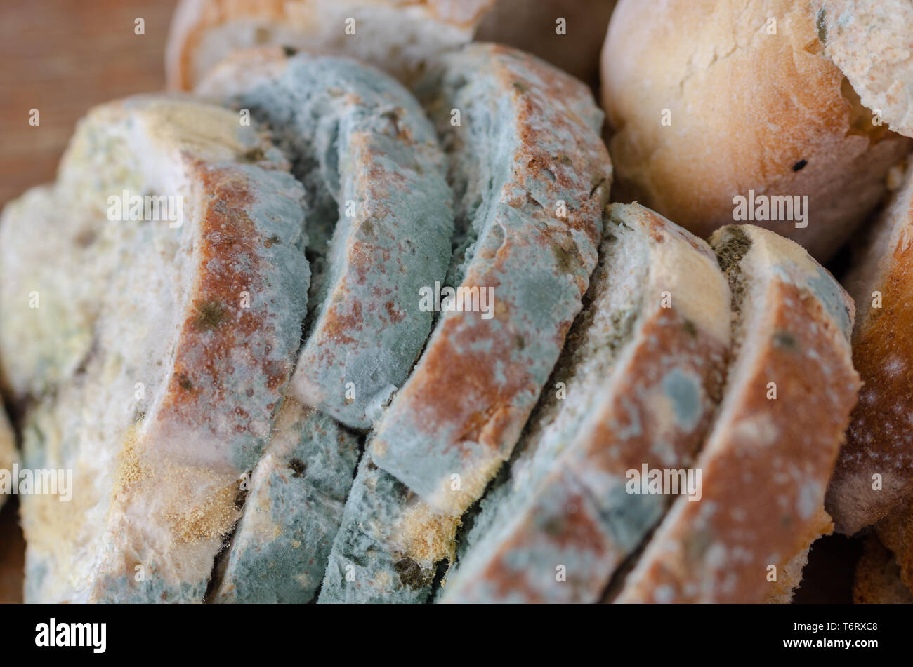 Moldy bread slices on wooden cutting board.Moldy inedible food. - Stock Image