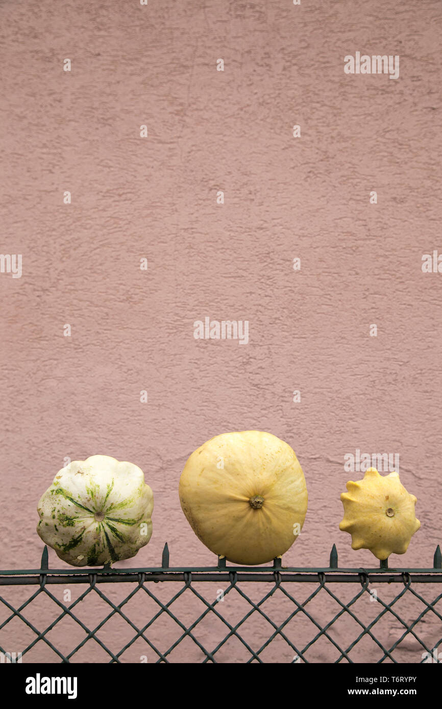 Pierced pumpkins on a fence; upright format - Stock Image