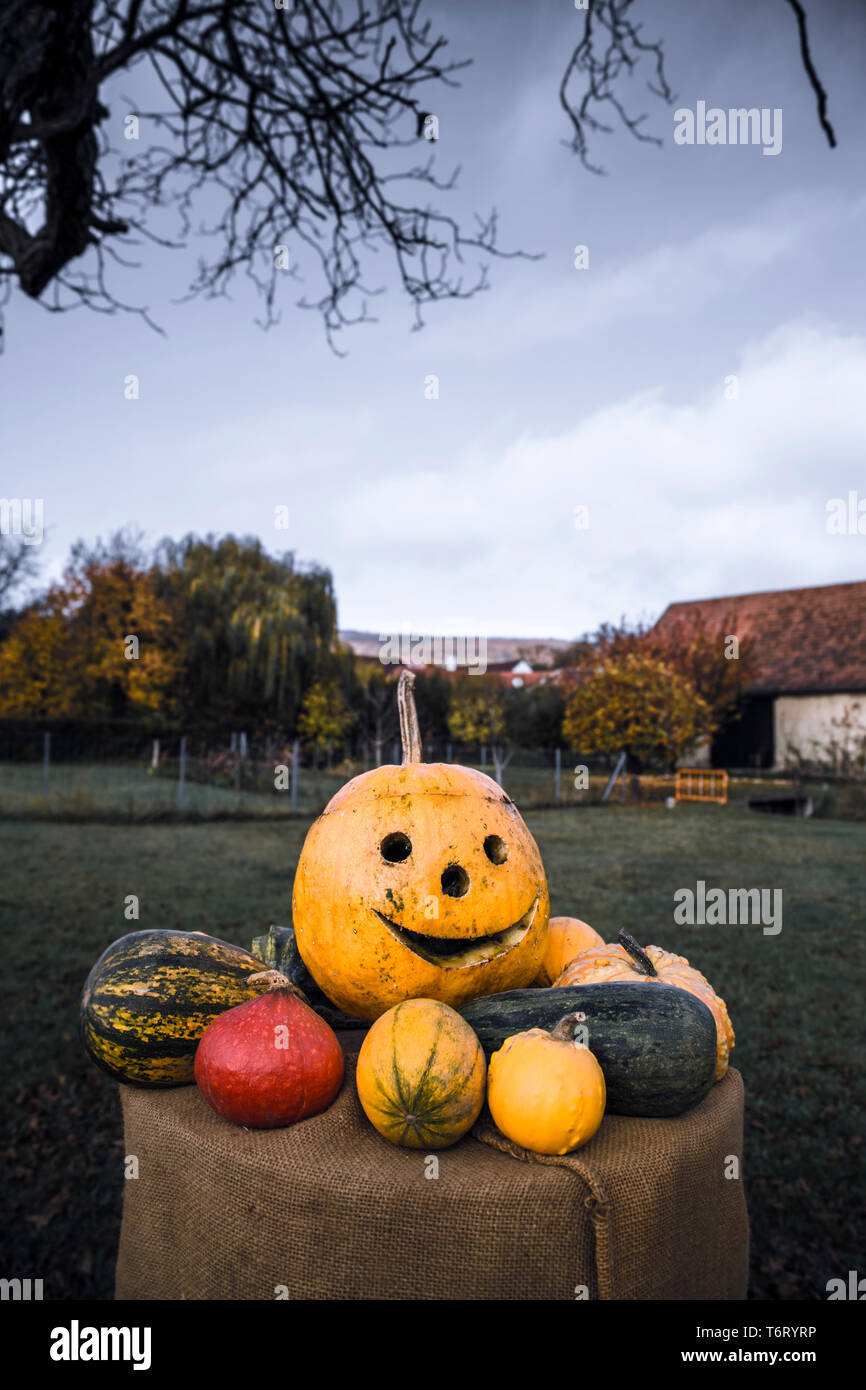Pumpin decoration at halloween; upright format - Stock Image