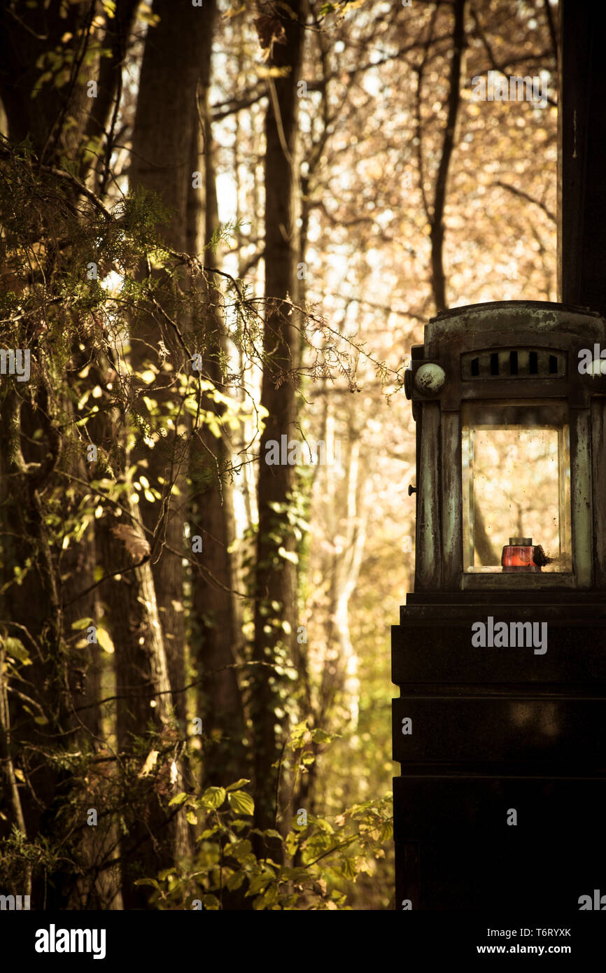 Withered grave lantern between leaves; upright format - Stock Image