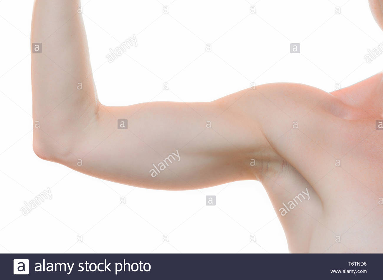 One woman bare shoulder and arm bent at the elbow - Stock Image