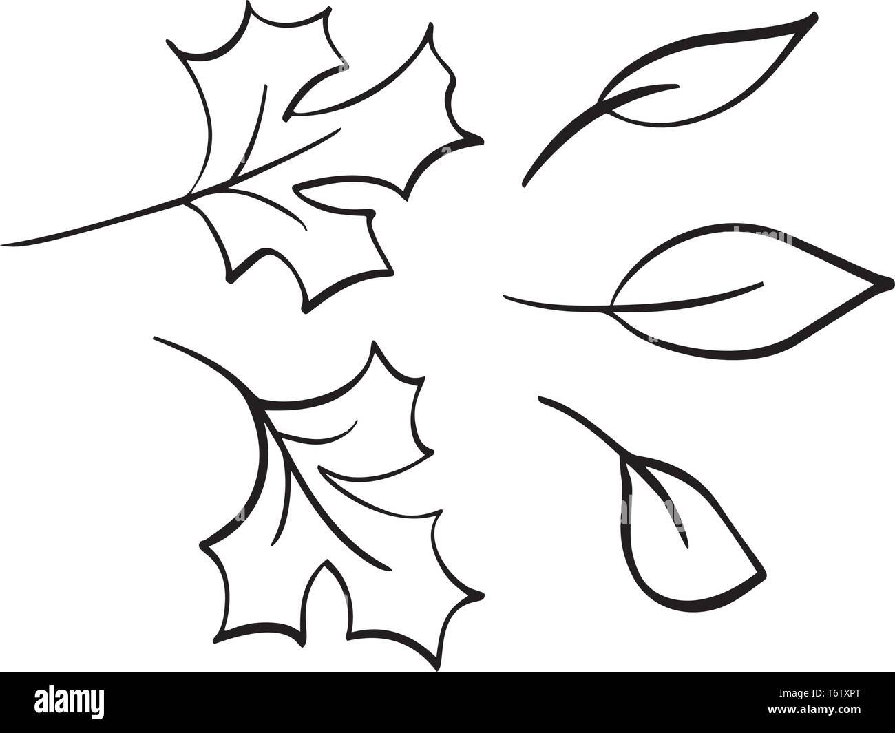 Vector Collection Of Hand Drawn Autumn Leaves Isolated Sketch Black And White Objects Beautiful Fall Drawing Elements Stock Vector Image Art Alamy